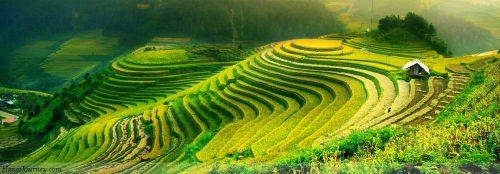 Sapa-Vietnam-Charity-Trek3