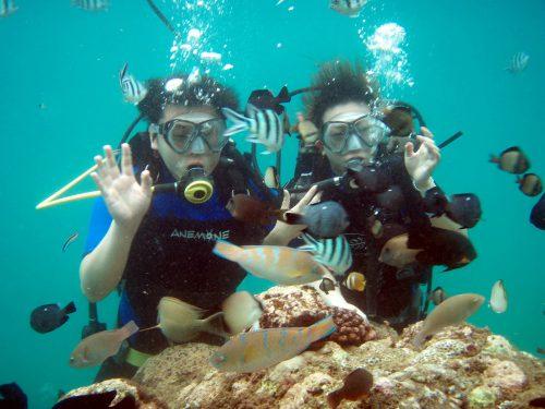 Tanjung Benoa 2